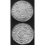 Sunken Treasure Coins