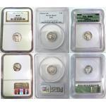 Platinum Tenth Ounce ($10)